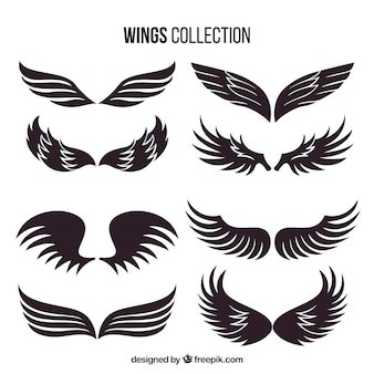 Collection of hand drawn dark wing