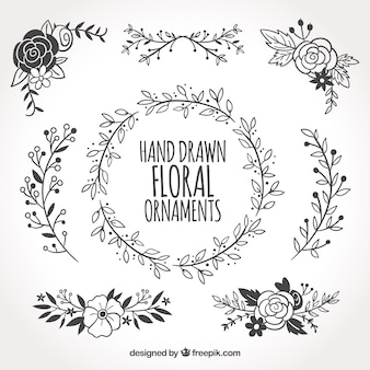 Collection of hand drawn floral ornaments