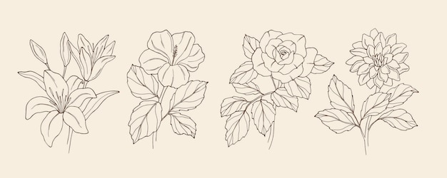 Collection of hand drawn flowers