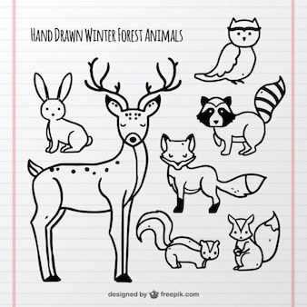 Collection of hand-drawn forest animals
