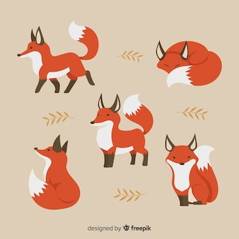 Collection of hand drawn fox