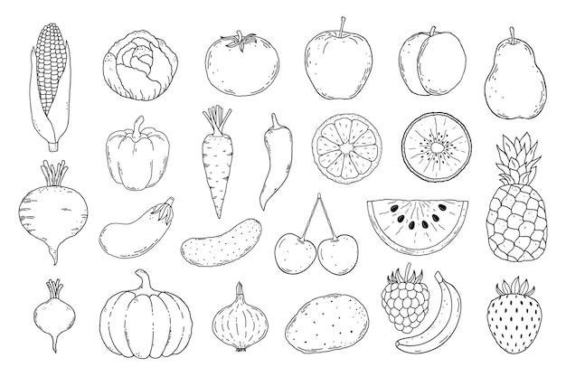 Collection of hand drawn fruits and vegetables icons on white background.