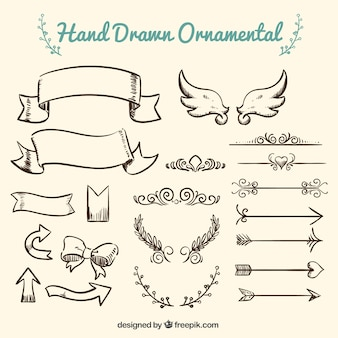 Collection of hand drawn ornament