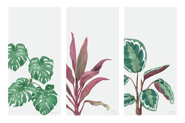 Collection of hand drawn plants isolated on white background