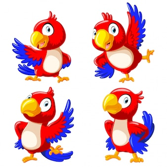 Collection of happy parrot cartoon dancing