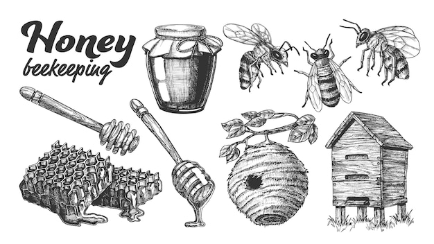 Collection honey beekeeping apiary set.