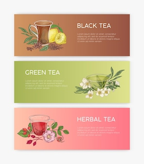 Collection of horizontal banner templates with tasty natural black, green and herbal tea in glass cups and place for text