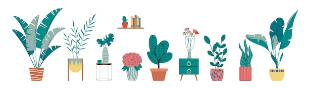 Collection of indoor, house tropical plants, cactus in pots. home decorative and deciduous plants in a scandinavian hand drawn flat style.