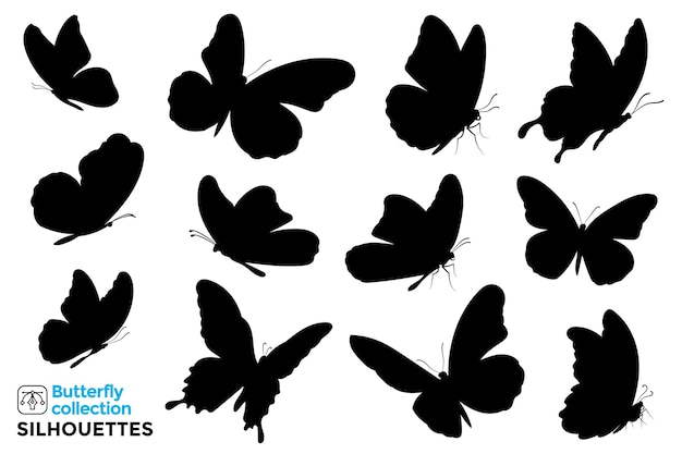 Collection of isolated silhouettes of butterflies.