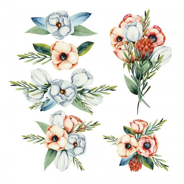 Collection of isolated watercolor bouquets of white and coral anemone and protea flowers, hand painted illustration