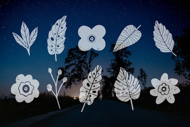 Collection of leaf design and night road landscape