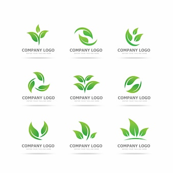 Collection of leaf logo design template
