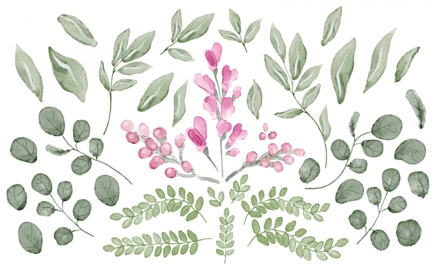 Collection of leaves and flowers in watercolor