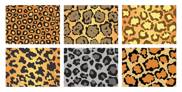 Collection of leopard textures. seamless prints with wild animal skin.
