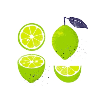 Collection of limes, isolated on white background.