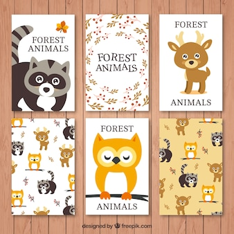 Collection of lovely forest animals cards