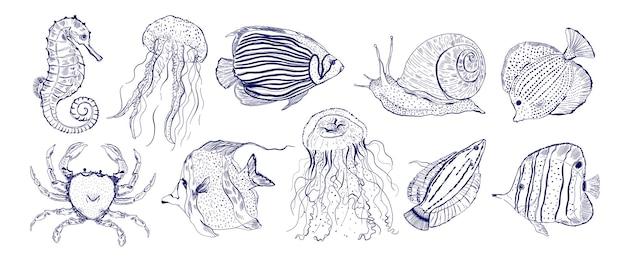 Коллекция морских животных, наброски, наброски, рисованные крабы, улитки, морские конь, медузы и другие