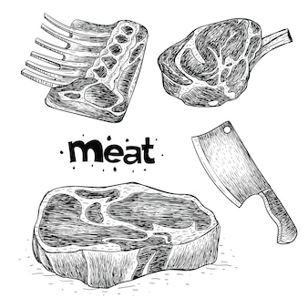 Collection of meat in hand drawn