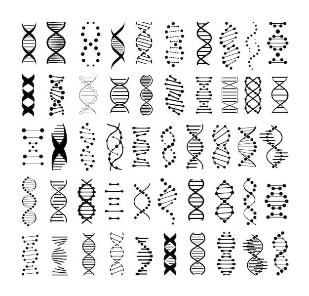 Collection of monochrome dna spirals