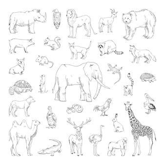 Collection of monochrome illustrations of animals in sketch style