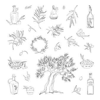 Collection of monochrome illustrations with olives in sketch style