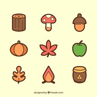 Raccolta di elementi naturali di autunno