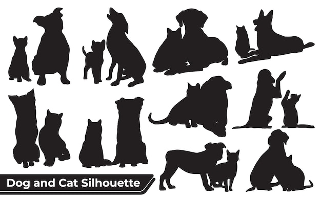 다른 위치에 있는 동물 개와 고양이의 컬렉션