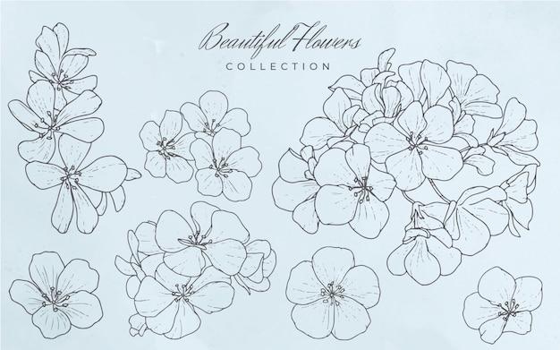 Коллекция красивых цветов