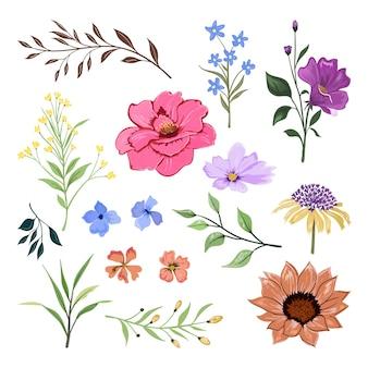 아름 다운 허브와 야생 꽃과 잎 흰색 절연의 컬렉션