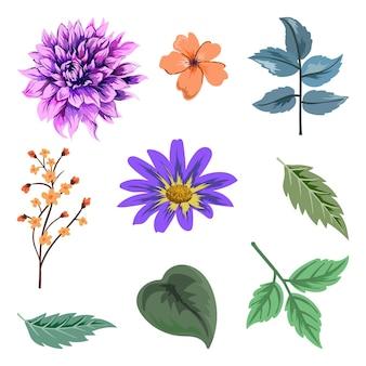 아름 다운 허브와 야생 꽃과 잎 절연의 컬렉션입니다.