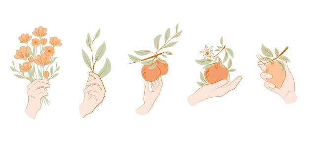 한 선 스타일의 식물, 과일, 꽃과 아름다운 여성 손의 컬렉션입니다. 피 추상 여자. 미니멀리즘 스타일