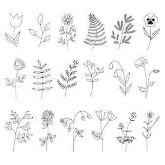 검은 손으로 그린 꽃과 야생 허브의 컬렉션