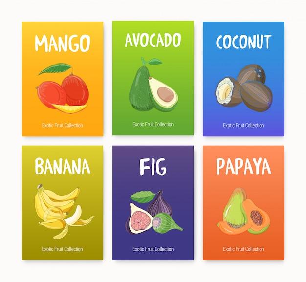 Коллекция ярких цветных карточек с вкусными спелыми сочными экзотическими тропическими фруктами, целыми и нарезанными ломтиками