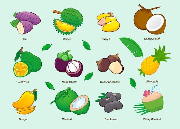 Коллекция иконок еды мультфильм. азиатские фрукты.