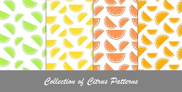 柑橘系のパターンのコレクション、シームレスな背景-