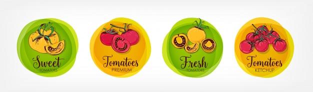토마토, 케첩 및 관련 프리미엄 제품에 대한 컬러 라운드 레이블의 컬렉션입니다. 다채로운 손으로 그린 유기농 야채와 원형 태그의 번들.