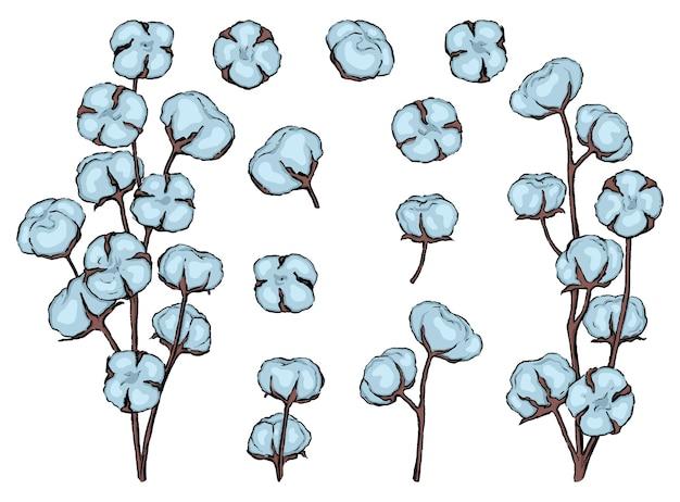 목화 스케치 모음입니다. 개화 목화 가지 세트입니다. 손으로 그린 벡터 일러스트 레이 션. 컬러 드로잉 화이트에 격리입니다. 디자인, 장식, 지문, 카드를 위한 부드러운 식물 요소.