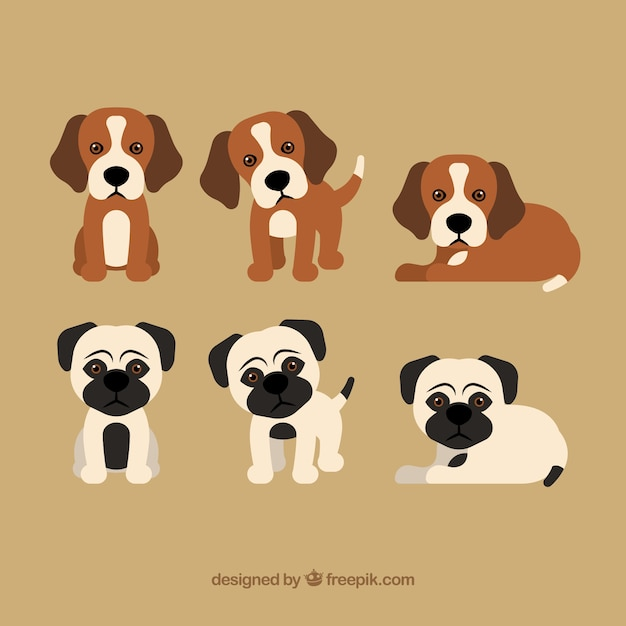 puppy vectors photos and psd files free download rh freepik com puppy vector art puppy vector image free