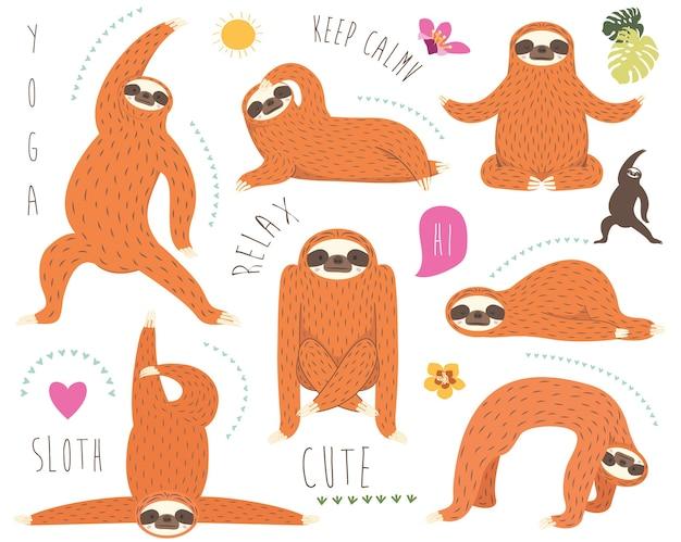 Коллекция милых ленивцев