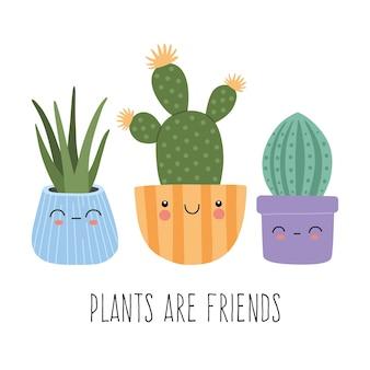 Коллекция симпатичных суккулентов или экзотических кактусов с забавными рожицами в разноцветных горшках