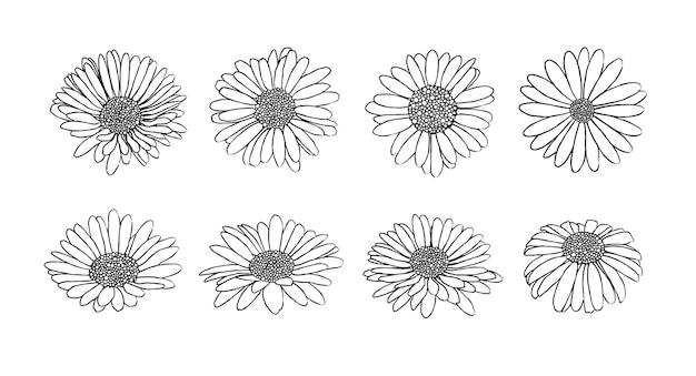 インクスタイルのベクトルでデイジーの花のコレクション