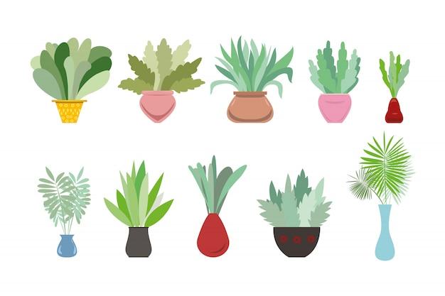 白い背景の上の装飾的な観葉植物のコレクション。鍋やプランターで育つ流行の植物の束。美しい自然な家の装飾のセット。カラフルなイラスト。