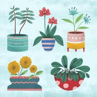 다른 녹색 관엽 식물의 컬렉션
