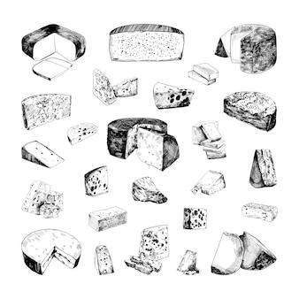 Коллекция разных видов сыров