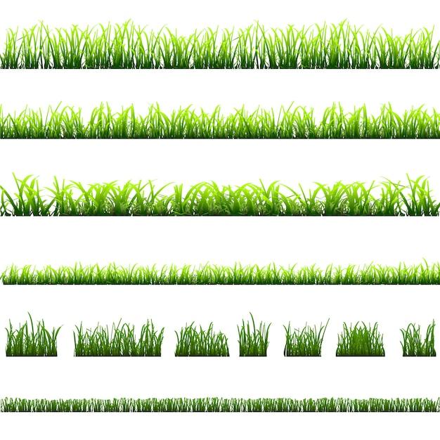 푸른 잔디의 다른 유형의 컬렉션