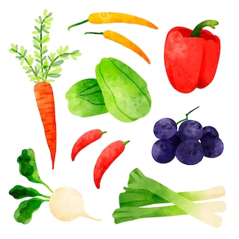 Коллекция различных акварельных овощей