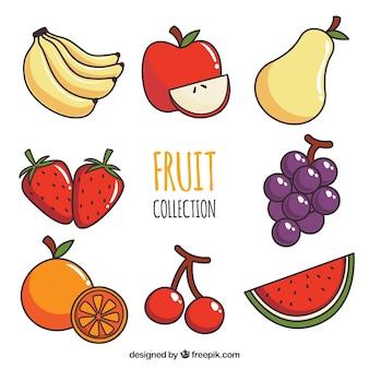 Коллекция восьми разных фруктов