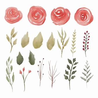 Коллекция элементов красной акварельной розы
