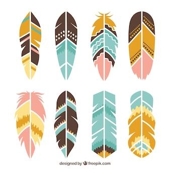 민족 깃털의 컬렉션