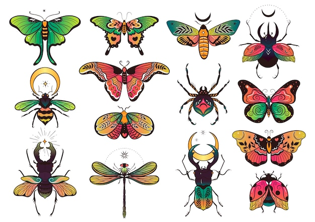 Коллекция фэнтезийных красочных насекомых для дизайна. векторная графика.